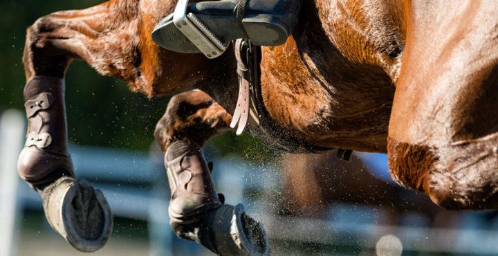 Trigeminal Neuralgia Patient Riding Horse After Surgery